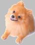 dogico4